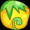 黄色彩虹菊种子